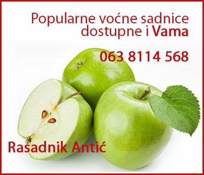 Sadnice voća i loze - Super Cena