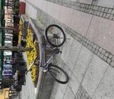 Biciklo Wheeler Xl ram 26 gume